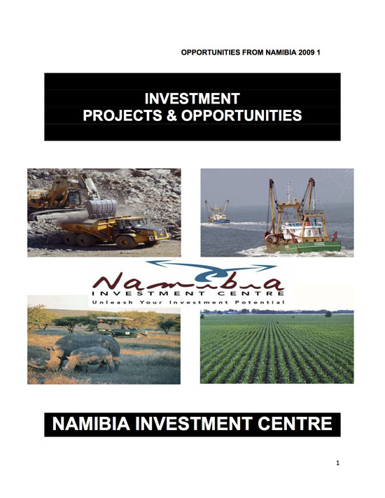 Investment_Projects_and_Opportunities_cover