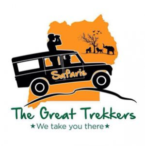 When to Use The Great Trekkers as a perfect Travel Agency 1
