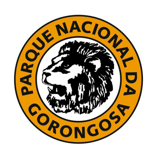 logo_grande_1