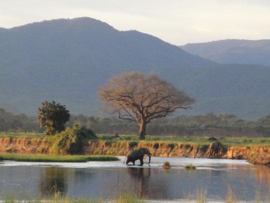 Zambezi-at-Mutsango