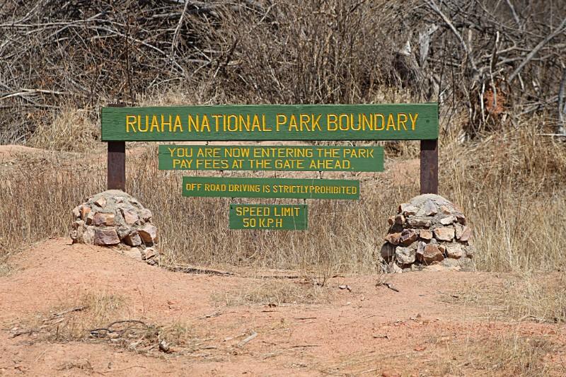 RUAHA_001_PHOTO_BY_Pius-Mahimbi_FLICKR