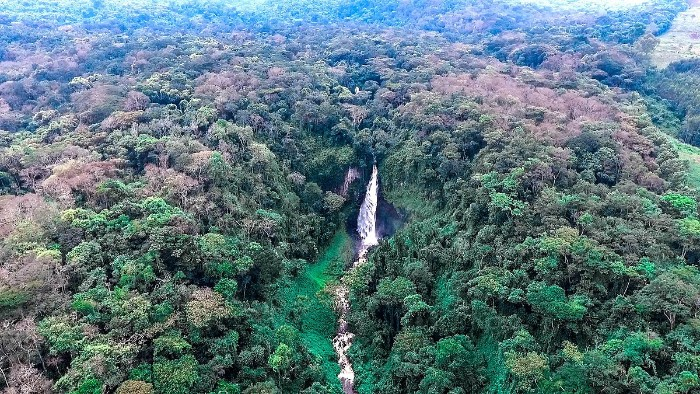 KAHUZIBIEGA_PHOTO_BY_Forest-Service_USDA_WIKIPEDIA