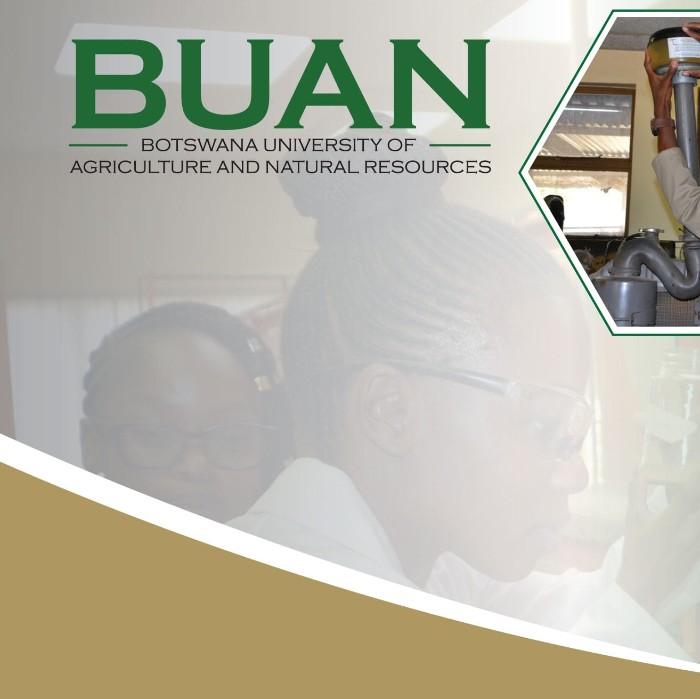 BUAN_002